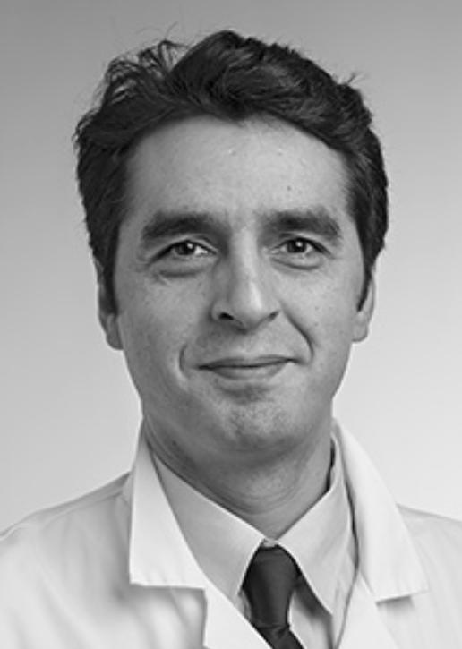 Mahmoud Meserer